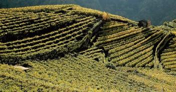 Condino Trentino
