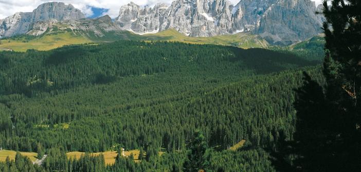 Sommer Dolomiten