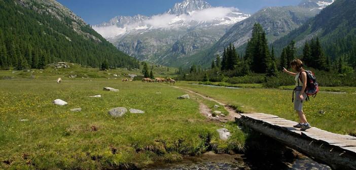 Adamello Naturpark